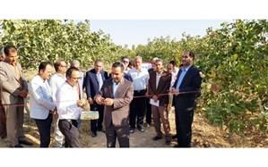 بهره برداری از دو طرح آب و خاک در شهرستان بویین زهرا