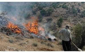 آتشسوزی در مزارع و مراتع گچساران مهار شد