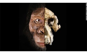 چهره قدیمیترین انسانهای اولیه رونمایی شد + تصویر