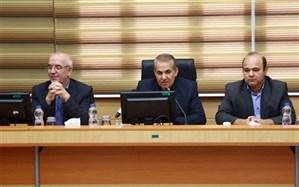 واگذاری گاوازنگ زنجان ظرف دو هفته آینده تعیین تکلیف شود