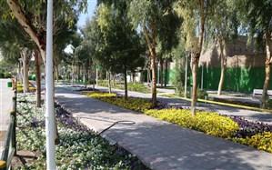 عدد پایین سرانه فضای سبز در مازندران، با وجود آب و هوای مناسب