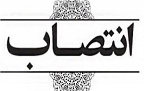 پنج انتصاب جدید در استانداری بوشهر