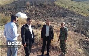 عاملان آتش سوزی منابع طبیعی در ساردوئیه به دستگاه قضائی احضار شدند