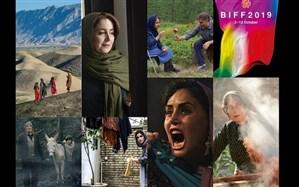 فیلم ایرانی در جشنواره فیلم بوسان 2019