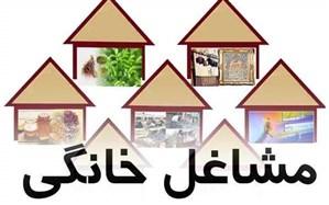 آغاز اعطای تسهیلات مشاغل خانگی در شهرستان فیروزه