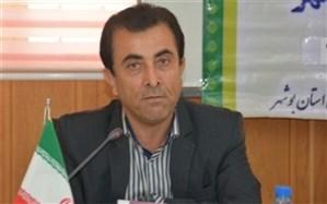 کلاسهای دو زبانه در ۵ منطقه آموزشی استان بوشهر برگزار شد