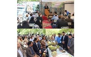 اولین همایش انگور دیم استان در روستای چزگ فیروزه برگزار شد