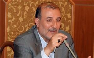 نماینده مردم کرج در مجلس شورای اسلامی : آسیب شناسی فعالیت شوراها ضروری است