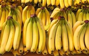 مصرف موز در وعده صبحانه موجب کاهش وزن میشود