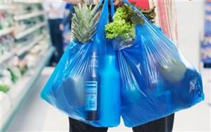 انتقاد عضو شورای شهر تهران از توزیع کیسههای پلاستیکی در فروشگاهها