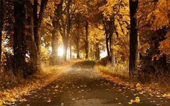 پاییز گرم