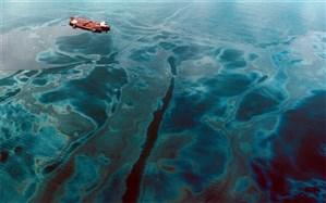وضع آلودگی خلیج فارس بحرانی است
