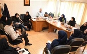 تشکیل جلسه کمیته هفته سلامت روان درشبکه بهداشت شهرری