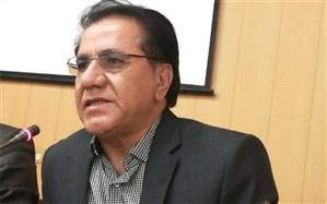 معاون جهاد کشاورزی فارس:  توسعه گلخانه ها نیازمند تسهیل صدور مجوز است