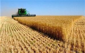 ۱۲ میلیارد دلار برای بخش آب و خاک کشاورزی کشور هزینه شد