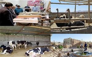 خودکفایی و اشتغال 3 هزار مددجوی کمیته امداد فارس