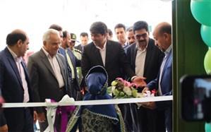 افتتاح همزمان 25 پروژه آموزشی و پرورشی در یزد