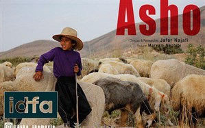 حضور مستند «آشو» در دو جشنواره بینالمللی «میلنیوم» و «فرایبورگ»