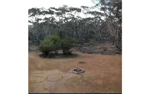 پیامSOS جان زن استرالیایی گم شده در طبیعت را نجات داد + تصویر