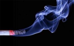 برنامه 5 ساله شهر و روستای بدون دخانیات اجرا میشود