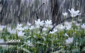 هفته آینده کدام مناطق کشور بارانی می شوند؟
