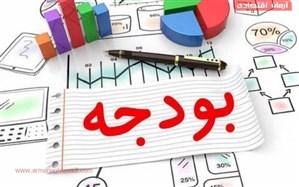 معاون سازمان برنامه: شفافسازی بودجه در دستور کار است