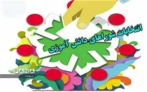 45 هزار دانش آموز کاشانی در انتخابات شوراهای دانش آموزی شرکت کردند