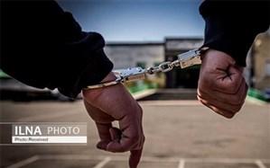 دستگیری زوج سارق خودروهای مناطق شمال غرب تهران