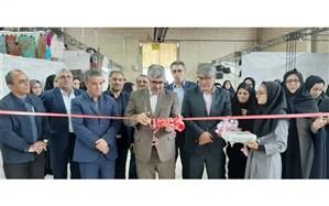 تولیدات بانوان نقش مهمی در توسعه استان اردبیل دارد