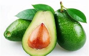 خوردن روزانه «آووکادو» به کاهش کلسترول بد کمک می کند
