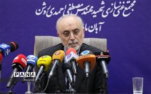 صالحی: ایران به گامهای خود برای کاهش تعهدات هستهای ادامه خواهد داد