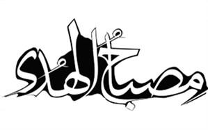 سید مجتبی هاشمی: سبک زندگی اهل بیت(ع) بهترین الگوی تربیتی برای دانشآموزان است