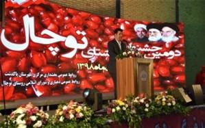 برگزاری جشنواره یاقوت سرخ در پاکدشت