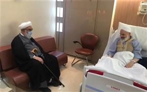 عیادت جمعی از مسوولان کشور از آیتالله حسینی بوشهری + تصاویر