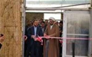 با حضور معاون پارلمانی رئیس جمهور  از کشت نوین بدون خاک در مهریزبهره برداری شد
