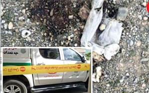 معمای جسد سوخته در کشف رود