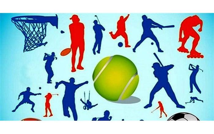 رییس اداره ورزش و جوانان شهرستان شیراز: 48 هیات ورزشی در شهرستان شیراز فعال هستند
