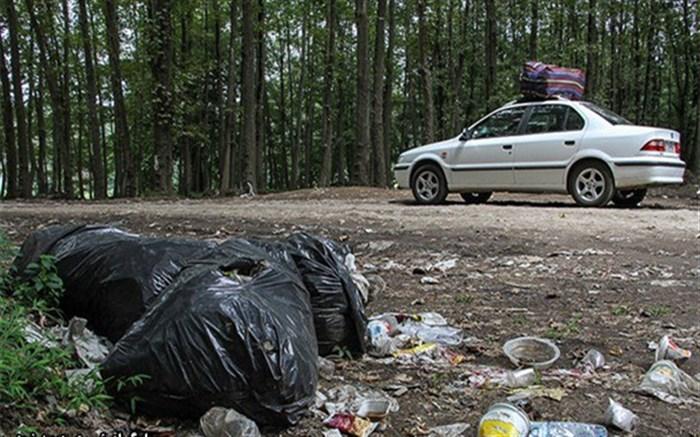 زباله های جنگل