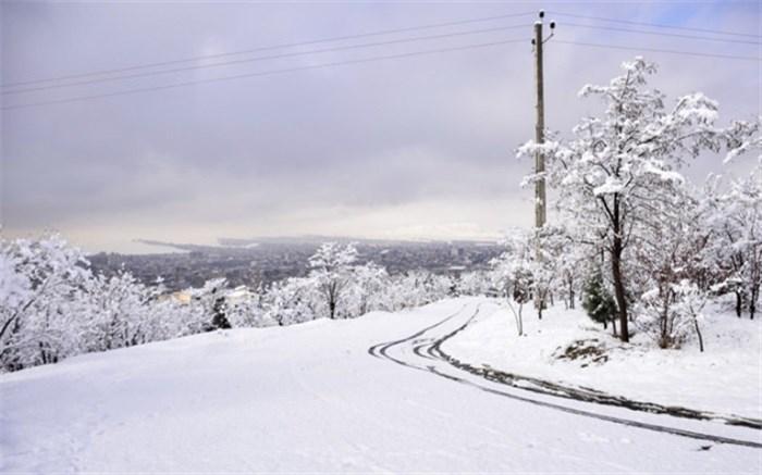 بارش شدید برف در مناطق شمالی تهران