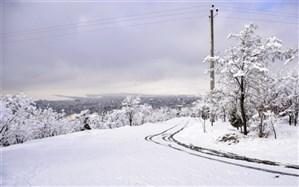 دیشب کجا ۲۰ سانت برف بارید؟