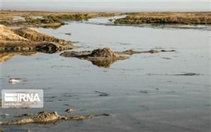 نجات تالاب گاوخونی یک مصلحت فرا نسلی است