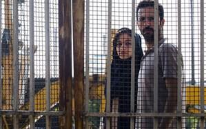 «پروا» متقاضی حضور در جشنواره ملی فیلم فجر ۳۸ شد