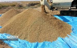 افزایش کشت شلتوک درشهرستان حمیدیه درسال زراعی ۹۸