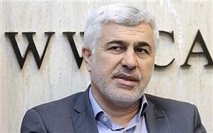 سلیمی: مردم کشورمان صدای مظلومیت فلسطین را در فضای مجازی به گوش جهانیان رساندند