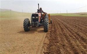 اجرای طرح ملی گندم بنیان در سطح 12 هزار هکتار از اراضی زراعی فارس