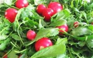 افزایش قیمت سبزی خوردن دریزد