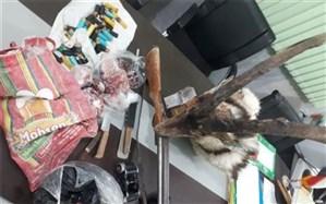 دستگیری ۳ متخلف شکار و صید در شهرستان بهاباد