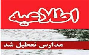 مدارس چند شهر استان بوشهر تعطیل شد