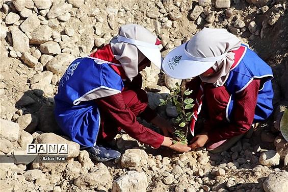 کاشت بیش از 4 هزار نهال توسط دانشآموزان گراش