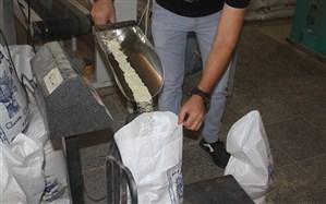 ۴۰ تن برنج تعاونی در چالدران توزیع میشود